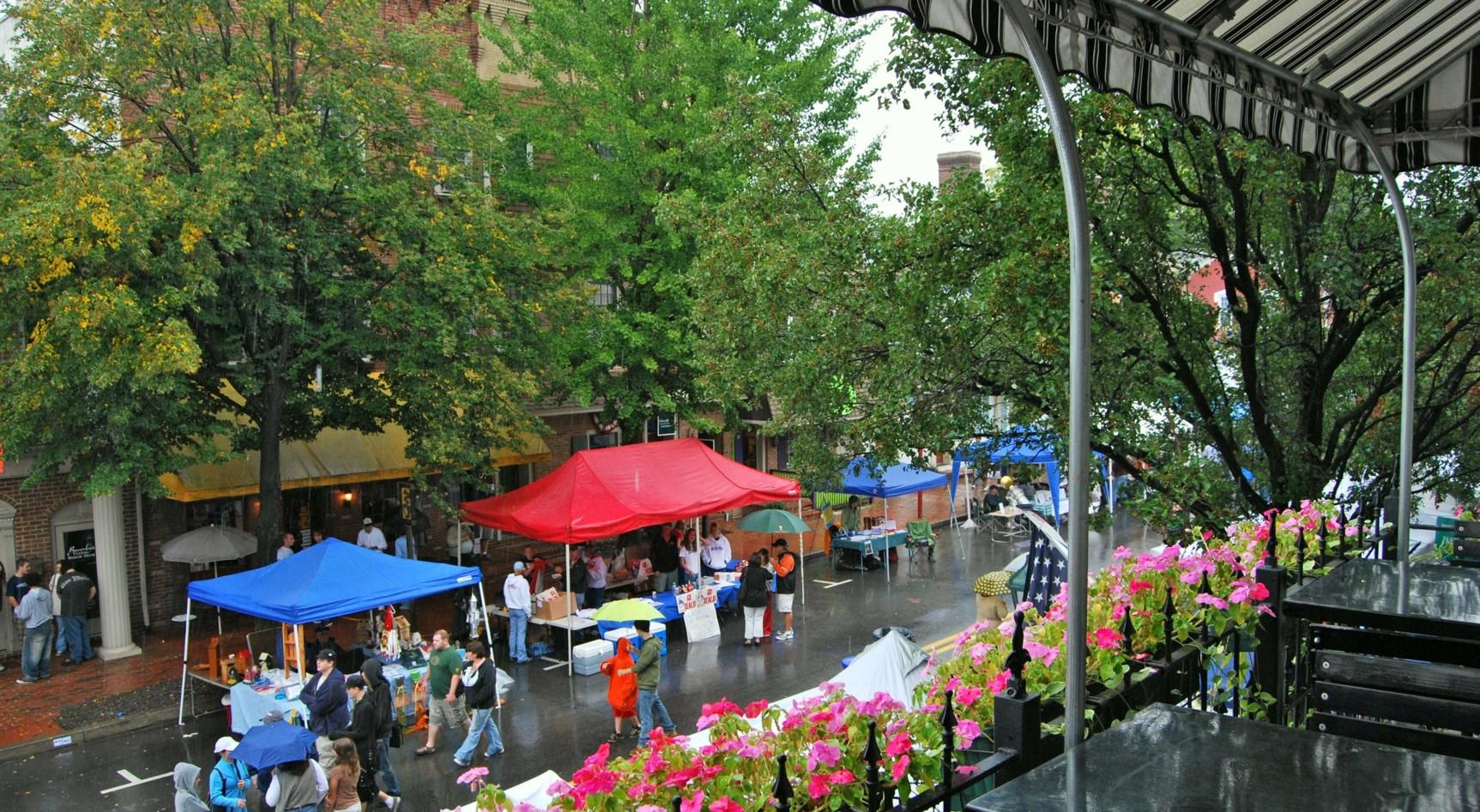 Annual Street Fair, Downtown Selinsgrove