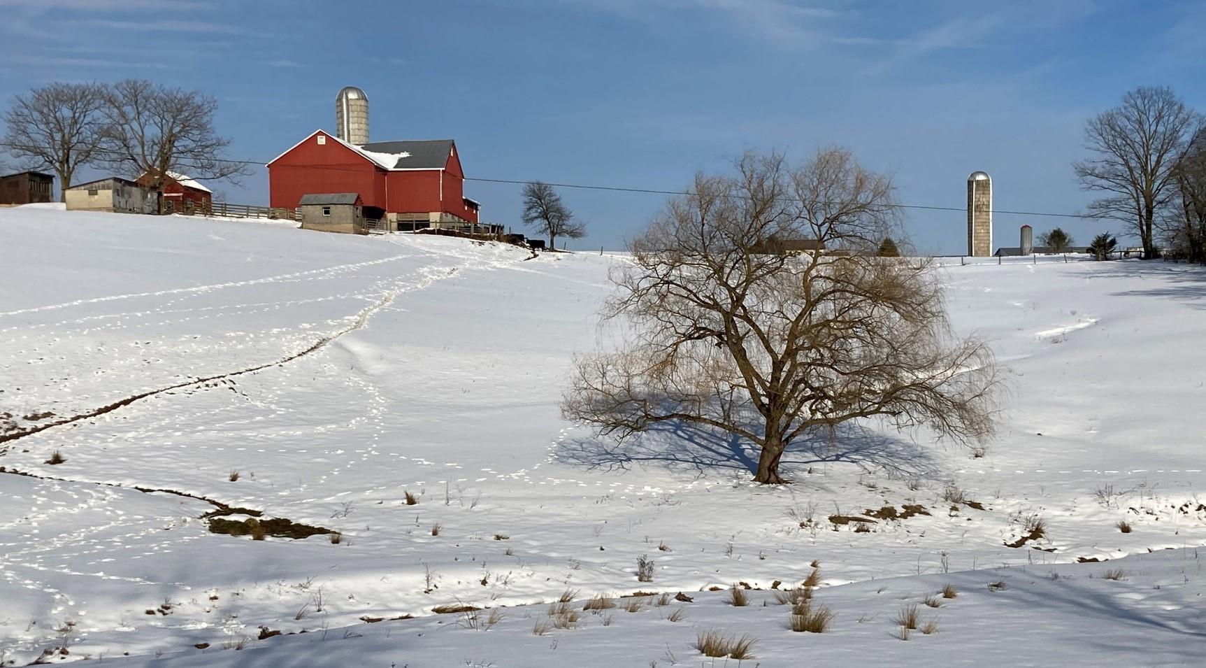 Winter Scene in Union Township